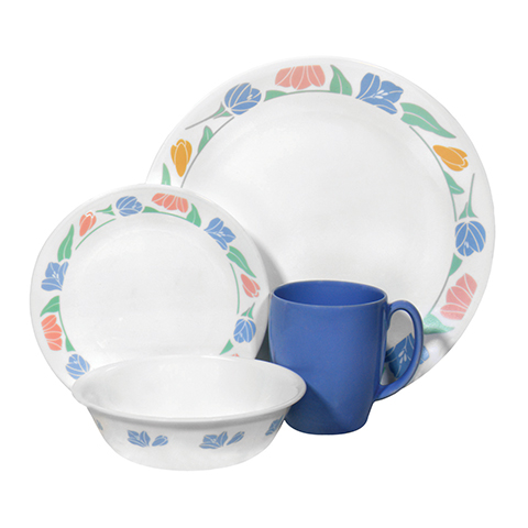 Friendship 16 Piece Dinner Set